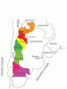 importateur de vins - vignoble argentine