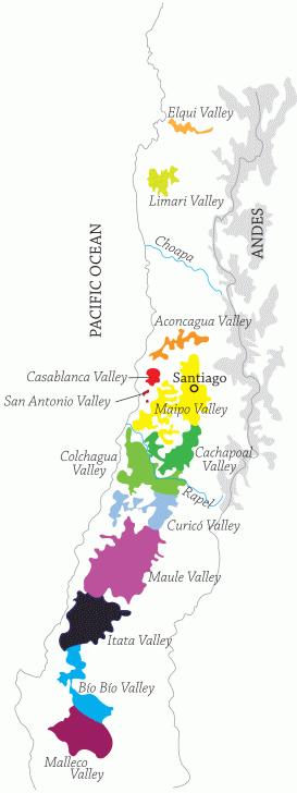 importateur de vins - Vignoble Chili