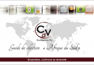 Guide conseil vins sud africain