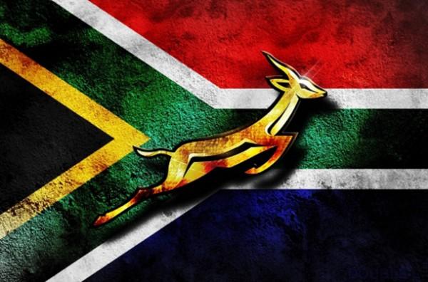 stellenbosch vins d'afrique du sud