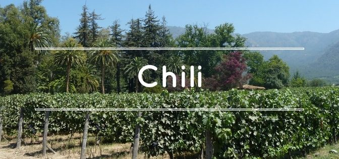 continent-du-vin-importateur-de-vins-du-chili