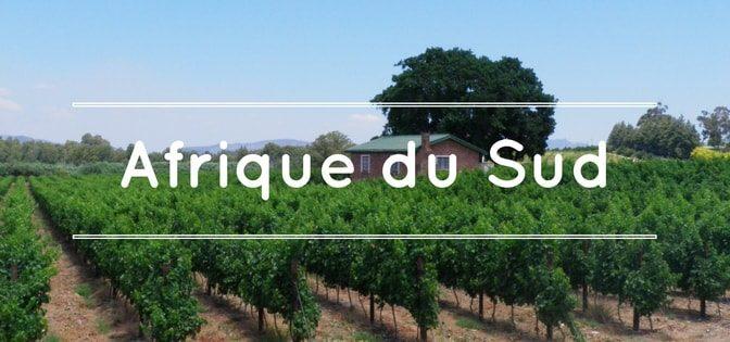continent-du-vin-importateur-de-vins-dafrique-du-sud