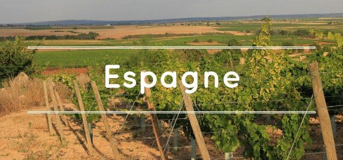 continent-du-vin-importateur-de-vins-despagne