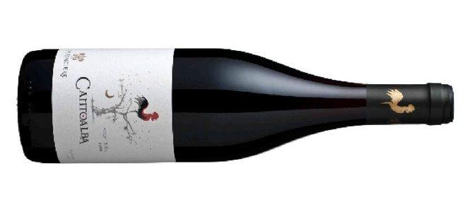 LA RONCIERE – CantoAlba Pinot Noir – Vin du Chili