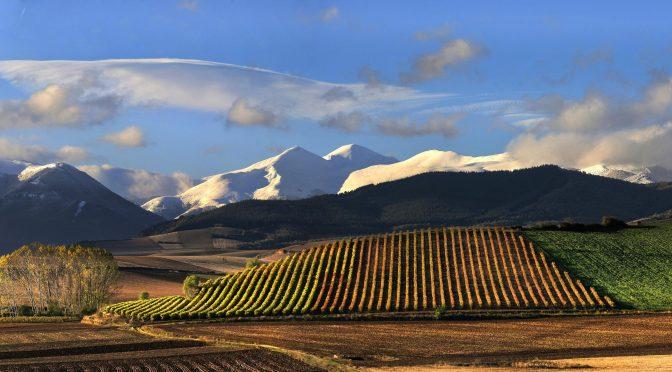 La Rioja importée par Continent du Vin