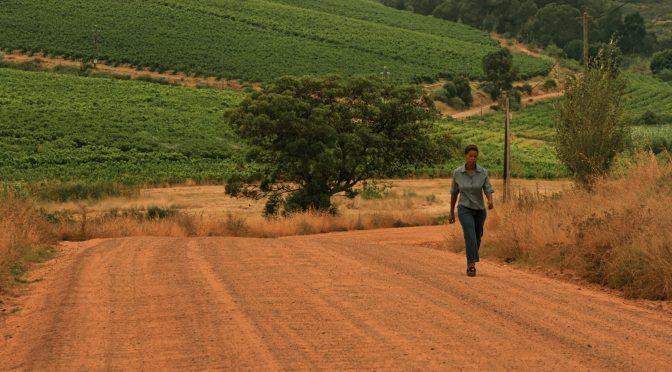 Stellenbosch – Vin d'Afrique du Sud