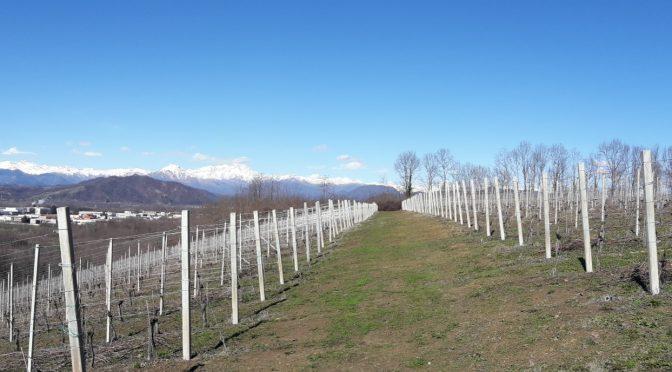 Alto Piemonte, l'autre région du Piémont